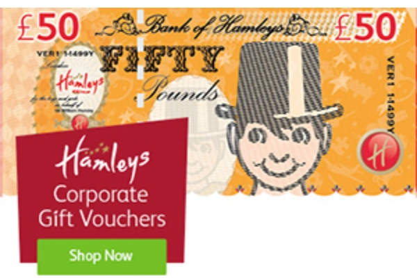 hamleys simple corporate voucher