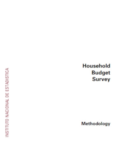 household budget survey
