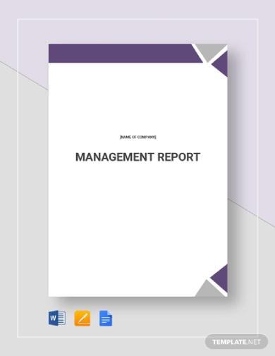 management report