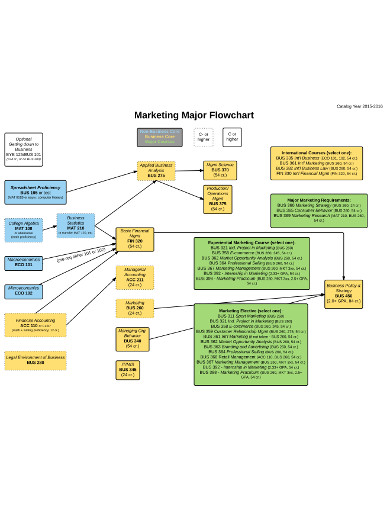 marketing major flowchart