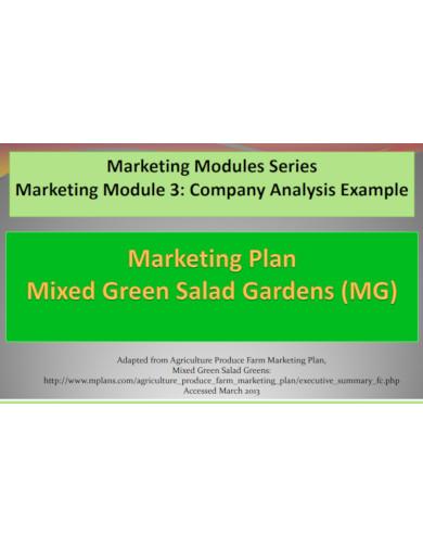 marketing module company analysis