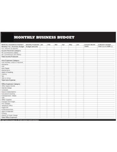 monthly business budget1