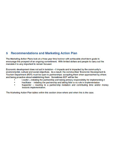 recommendations and marketing action plan