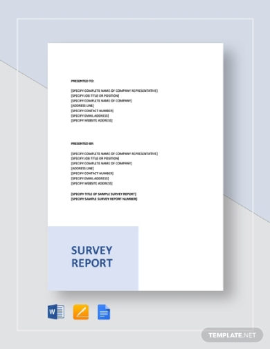 sample survey report