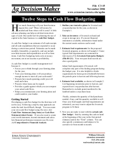 twelve steps to cash flow budgeting