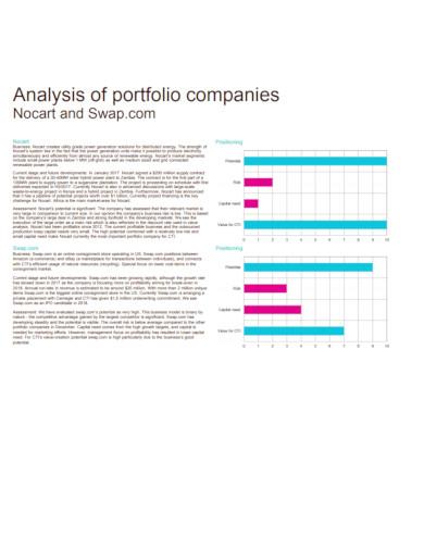 analysis of company portfolio