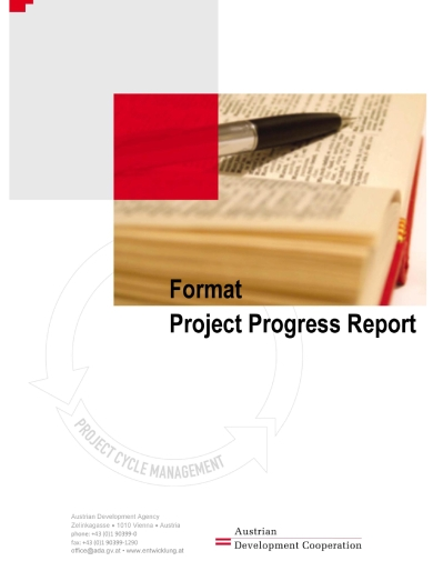 annual project progress report