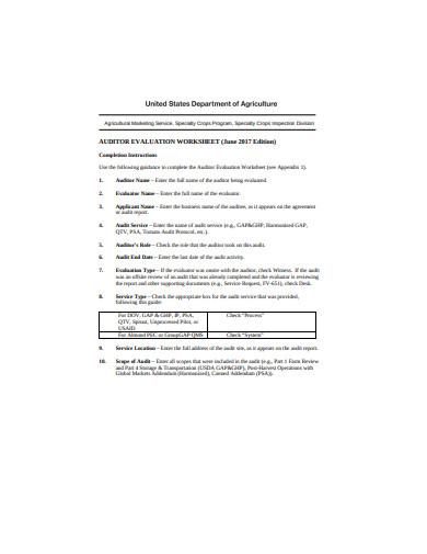 auditor evaluation worksheet example