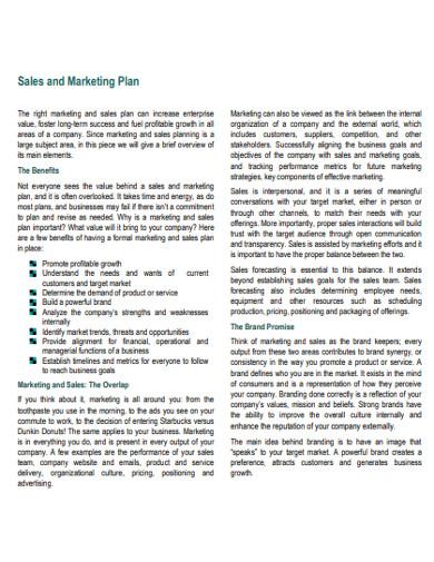 basic sales plan example