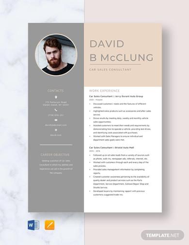car sales consultant resume template