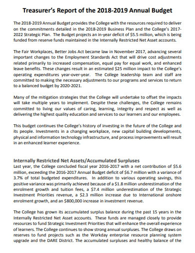 college report annual budget