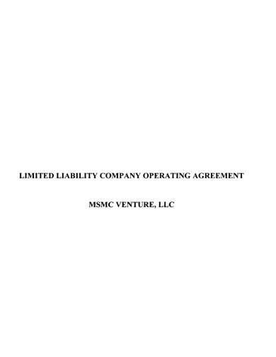 company agreement format