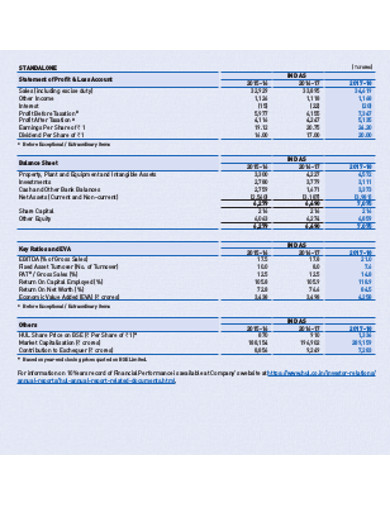 company annual report example in pdf