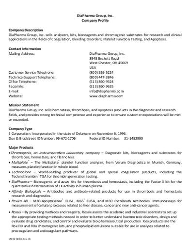 company description format