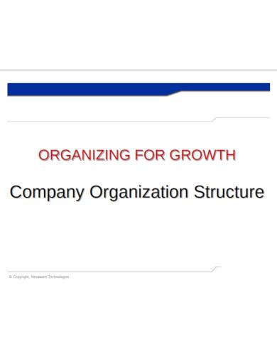 company organization structure