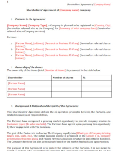 company shareholders agreement
