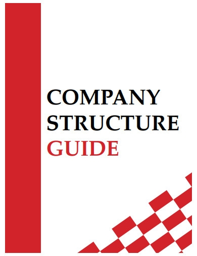 company structure guide