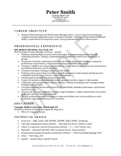free 10  professional web developer resume examples