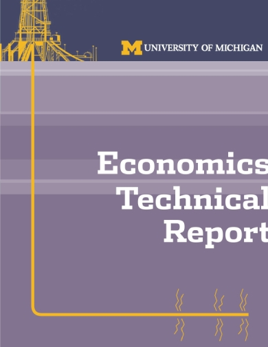 economics technical report