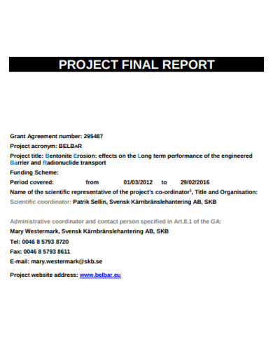 formal project final report