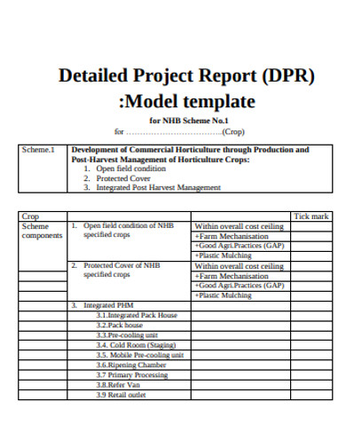 formal project report