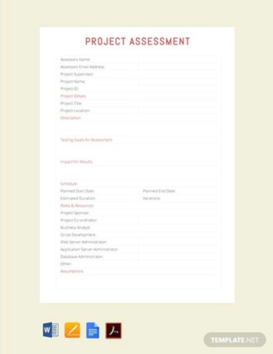 free project assessment template