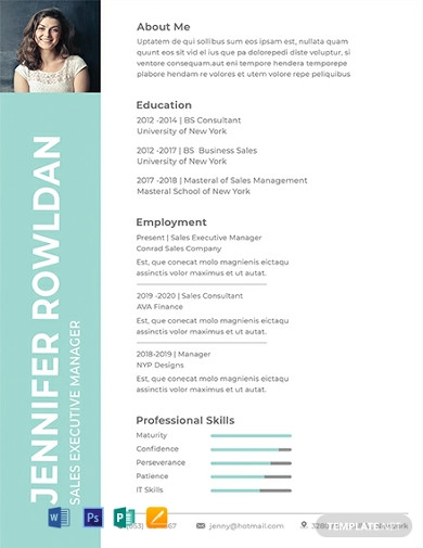 free sales executive resume format