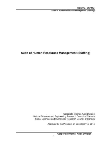 hr audit staffing report