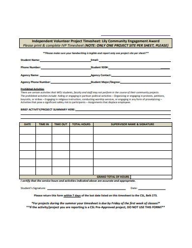 independent volunteer project timesheet