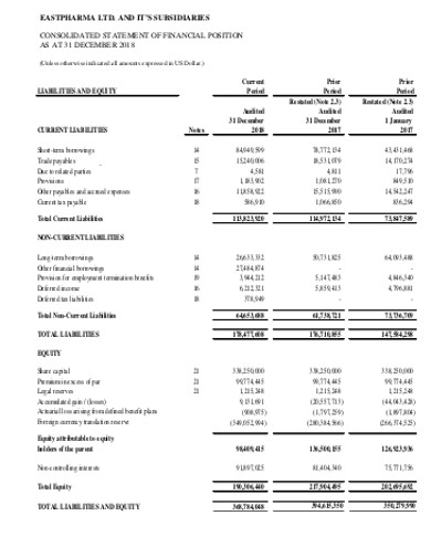 independent auditor company financial statement