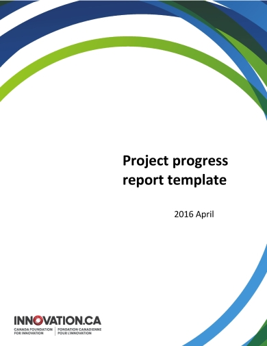 modern project progress report
