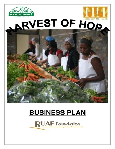 nonprofit business plan for harvest of hope