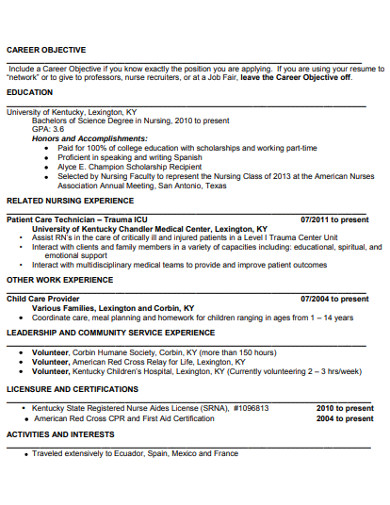 professional college student resume