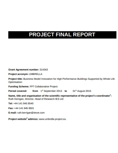 professional project final report