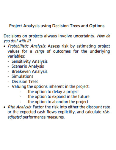 project analysis format