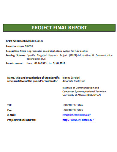 project final report example