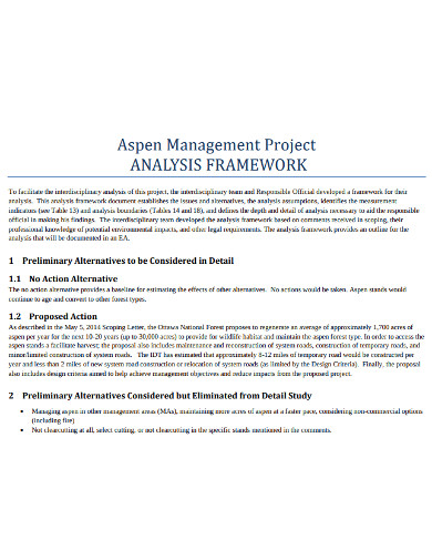 project managment analysis