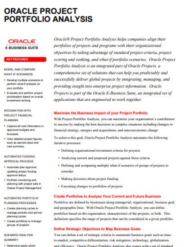 project portfolio analysis