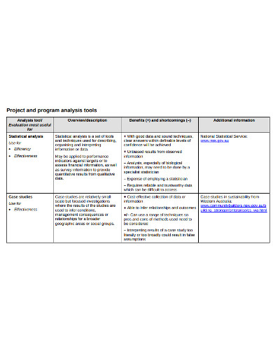 project programme analysis