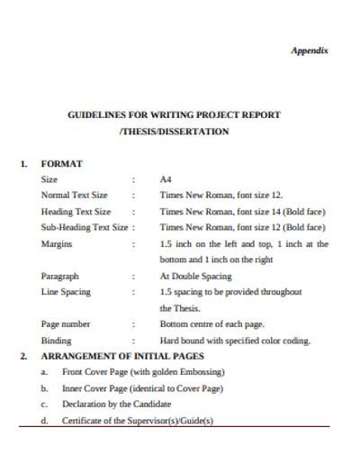 project report in pdf
