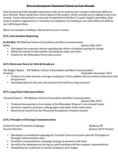 project resume example