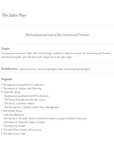 sales plan in pdf