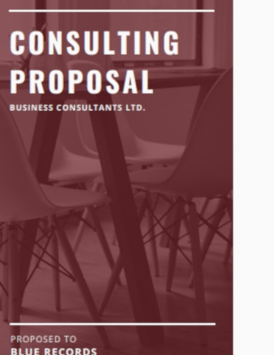 sample consultancy proposal template