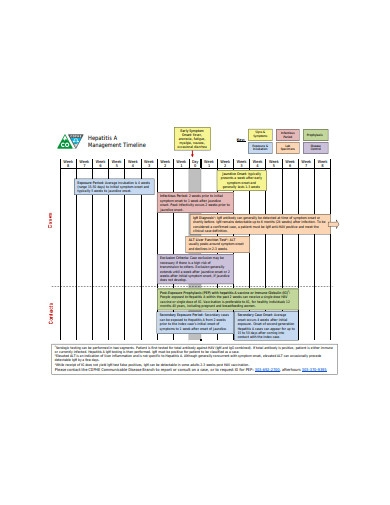 sample management timeline