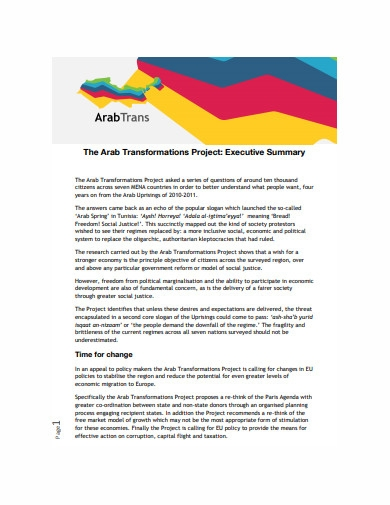 sample project executive summary