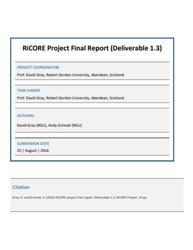 sample project final report example