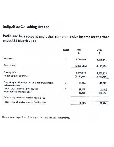 simple consulting profit and loss