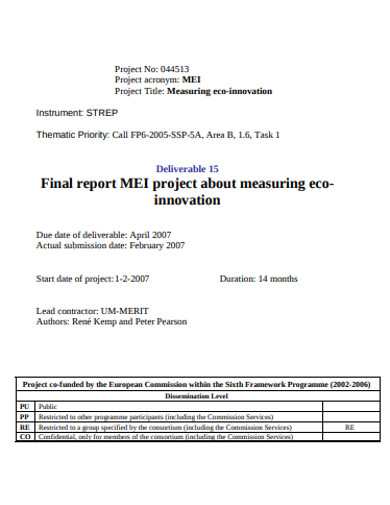 standard project final report