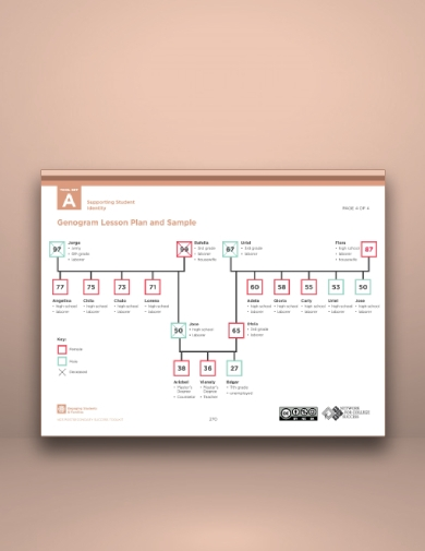 student identity support genogram sample