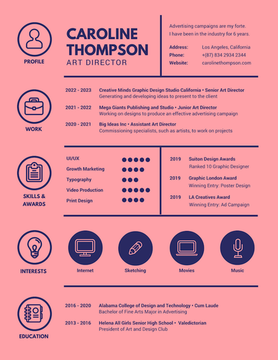 two color minimalist infographic resume